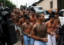 MS-13 crackdown --
