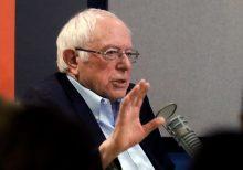 New Hampshire Trump voter blasts Bernie in live MSNBC interview: 'Anti-American, anti-life'