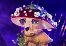 'The Masked Singer': Mushroom nearly sent home in shocking smackdown during Group C Finals